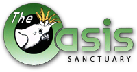 The Oasis Sanctuary
