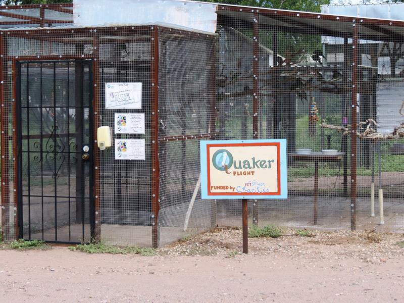2 Quakers2