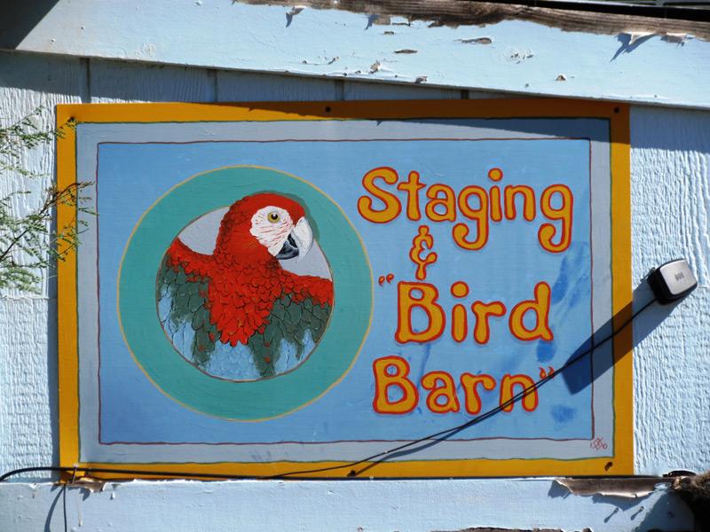 BirdBarn3-2015