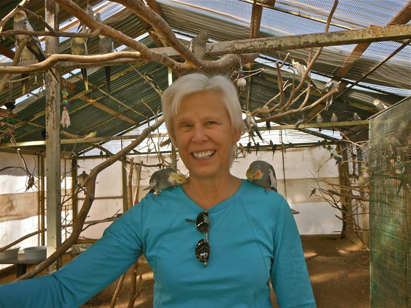 Volunteering At The Oasis Sanctuary – Somewhere Near Benson, Arizona