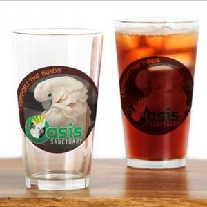oasis-glass