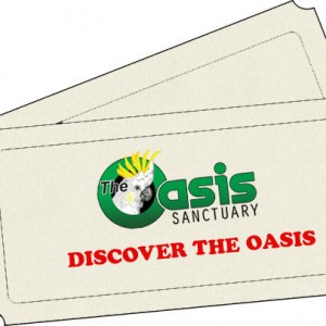 Discover The Oasis 2016