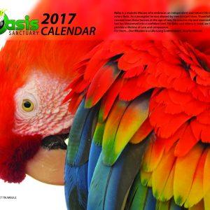 2017 Oasis Birds Calendar