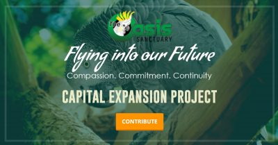 Flying Into Our Future Capital Expansion Project