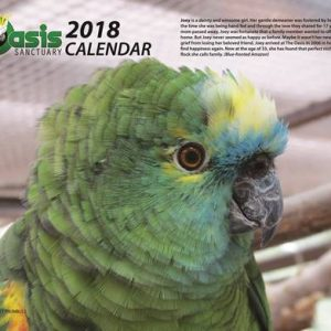 2018 Oasis Birds Calendar