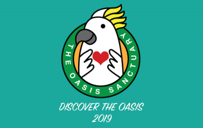 Discover The Oasis 2019