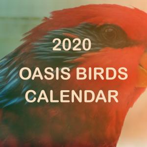 2020 Oasis Birds Calendar