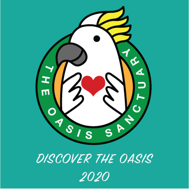 Discover The Oasis 2020