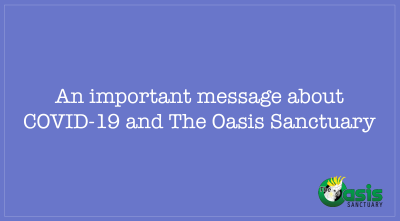 An Important Message About COVID-19 And The Oasis Sanctuary