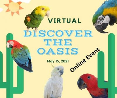 Discover The Oasis 2021 Online Event