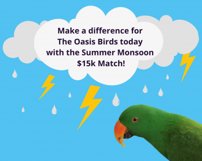 Summer Monsoon $15k Match Challenge