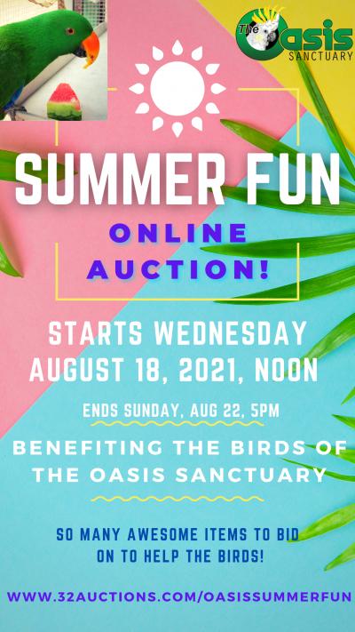 Summer Fun Online Auction